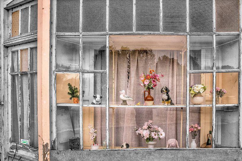 Verouderde winkeletalage in dorpje in Normandië. Frankrijk. van Harrie Muis