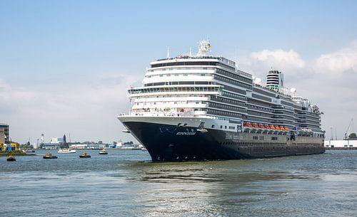 Het Ms Koningsdam in Rotterdam van