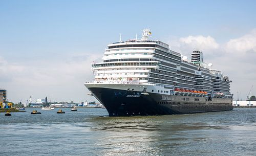 Het Ms Koningsdam in Rotterdam