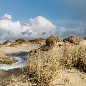Nederland waddeneilanden wandelen in de duinen van Terschelling van Marianne van der Zee