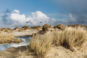Les Pays-Bas se promènent dans les dunes de Terschelling sur Marianne van der Zee