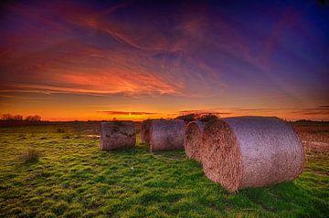 Hooirollen bij zonsondergang sur John Leeninga