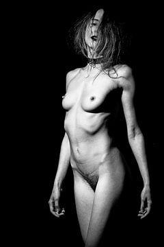 Nackt - Sehr schöne Frau, die nackt posiert von william langeveld