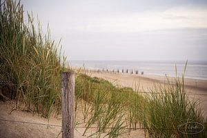 Vue du chemin de la plage sur Tina Linssen