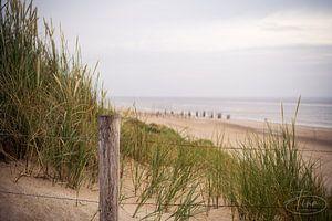 Uitkijkje vanaf het strand pad