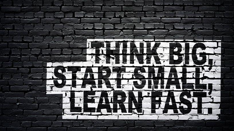 Denk groot, begin klein, leer snel. van Günter Albers