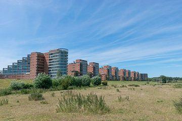 Panorama auf dem Maas-Boulevard in Den Bosch an einem schönen Sommertag von Patrick Verhoef