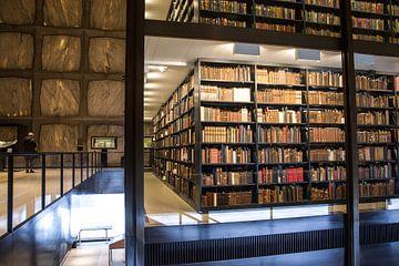 Beinecke bibliothèque de livres et de manuscrits speciaux sur Annelies Martinot
