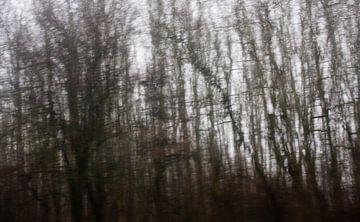 Winterbomen van Gwen Mustamu