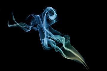 Rook 1 van Silvia Creemers