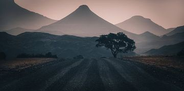 Silhouetten van Damaraland van Joris Pannemans - Loris Photography