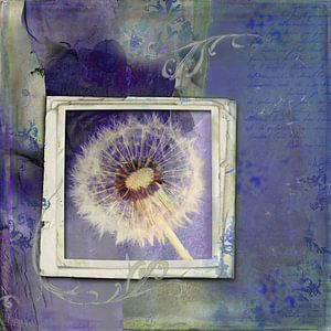 Beauty is everywhere - dandelion von Studio Papilio