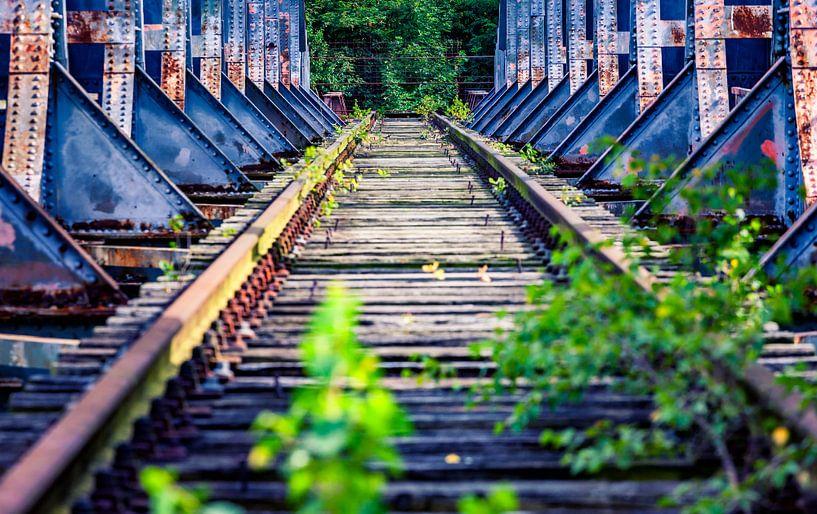 vervallen spoorwegbrug van Martijn van Dellen