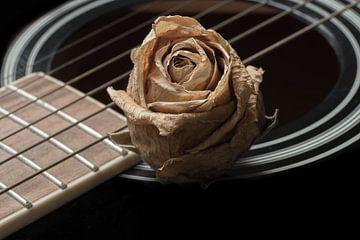 A song of roses van Rik Verslype