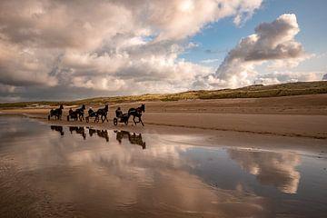 rennende Paarden, strand Wijk aan zee van Aldo Sanso