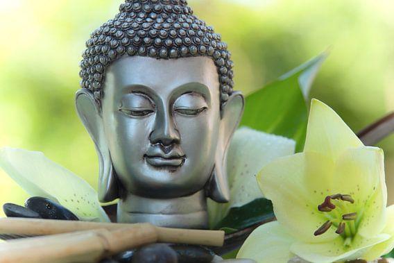 Buddha mit weißer Lilienblüte