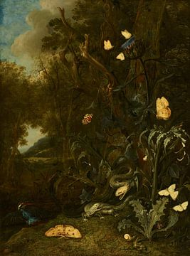 Pflanzen und Insekten, Otto Marseus van Schrieck