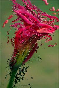 Verf bloem van