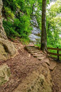Mullerthal Trail X van Marcel Moonen @ MMC Artworks