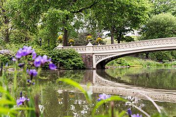 New York      Central Park sur Kurt Krause