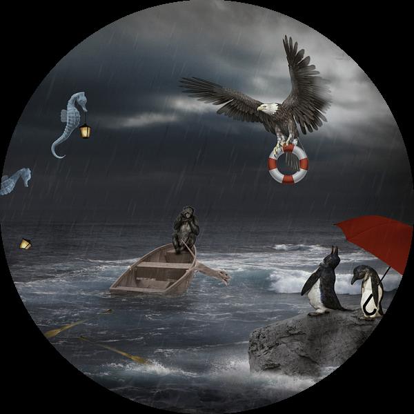 Nood op volle zee van Ursula Di Chito