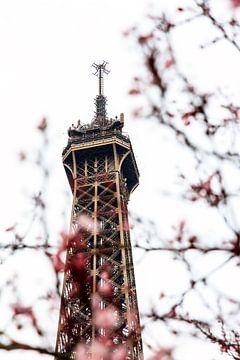 Eiffelturm in Nahaufnahme mit Blüte von Dennis van de Water