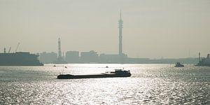 Barge auf der Nieuwe Maas