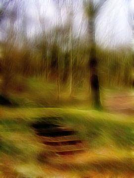 Stufen im Wald von Claudia Gründler