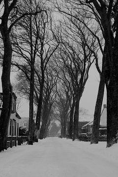 Snow von Nicole Nagtegaal