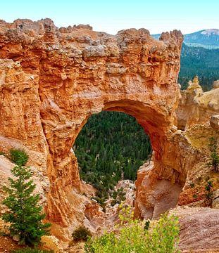 Naturbrücke Bryce Canyon Amerika von Marjolein van Middelkoop