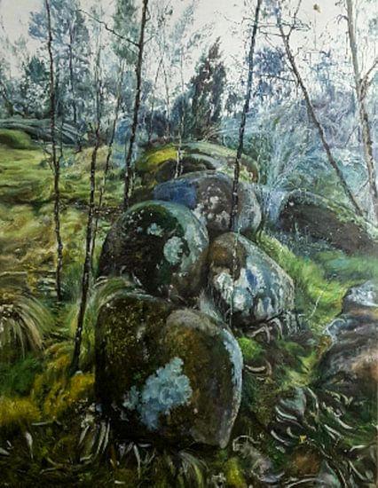 Aarde en de natuur moss landschap