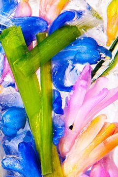 Kleurrijke bevroren bloemen van Jacqueline Groot