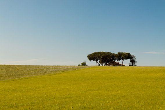 Huis op de vlakte