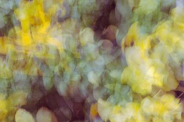 Bloemenpracht von Studio Kunsthart