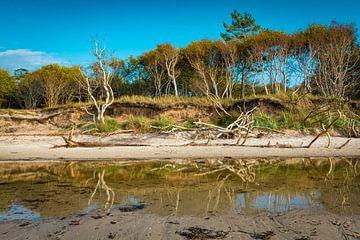 Westelijk strand op Fischland-Darß-Zingst van Martin Wasilewski