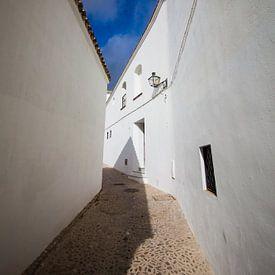 Witte dorpen in Andalusie (Arcos de la Frontera, Spanje) van Blijvanreizen.nl Webshop