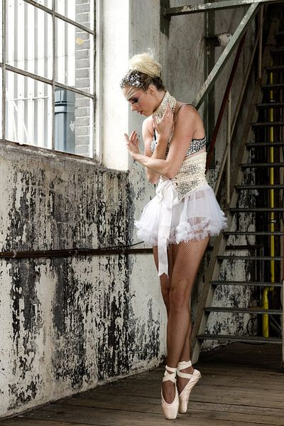 Ballerina dromend van een carrière in de dans ... van Hans Brinkel