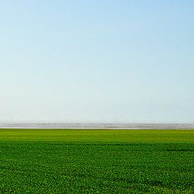 Windmolens op het platteland van Joris Louwes