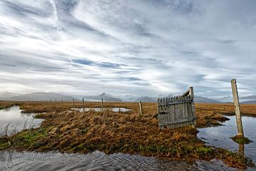 Paysage islandais. sur Tilly Meijer
