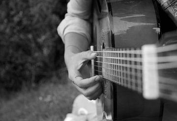 Gitarre von Floor Wessels