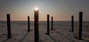 De zon van Michiel Wijnbergh