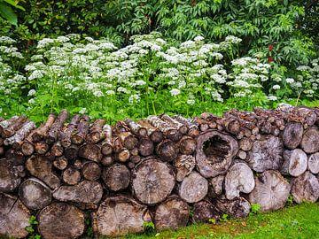 Gestapeltes Holz von Bert Cornelissen