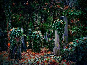 Friedhof 02