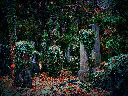 Friedhof 02 von
