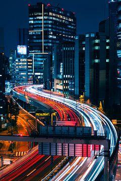 Tokyo Highway van Sander Peters Fotografie