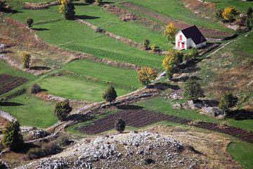 Mooi en gezellig wit eenzaam huis omringd door groene velden in de vroege herfst, Montenegro. Een sy van Michael Semenov