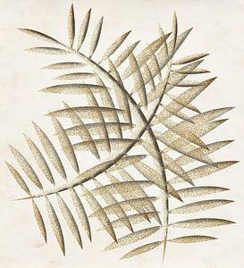 Goldene Blätter von Kay Weber