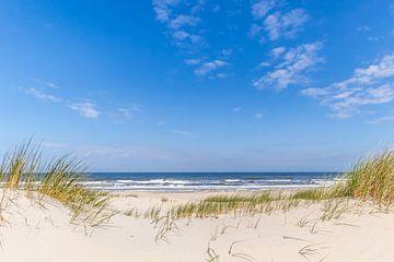 Beach Texel near De Koog sur Leon Lubse