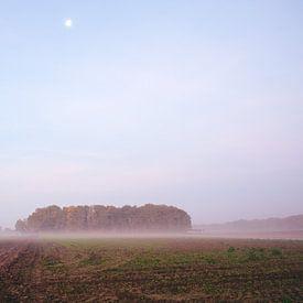 Gelders landschap net voor Zonsopkomst van Vladimir Fotografie