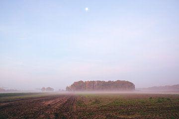 Kellerlandschaft kurz vor Sonnenaufgang von Vladimir Fotografie